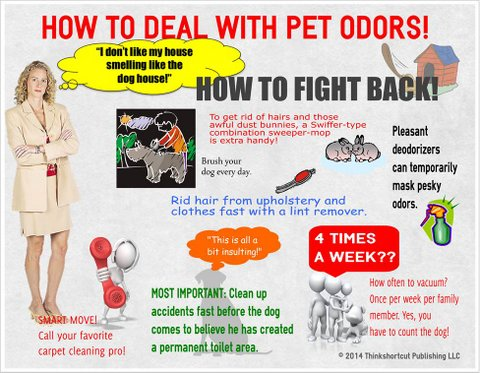 How to remove pet odor from carpets