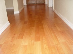 Cleaning hardwood floors