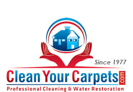 Clean Your Carpets Inc.