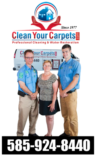Rochester's BEST Carpet Cleaner Service